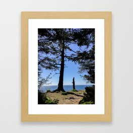 Life Stages of a Tree Framed Art Print
