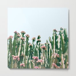 Blush Cactus #society6 #decor #buyart Metal Print