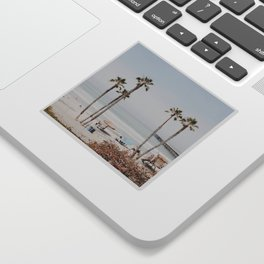 palm trees x / summer cali vibe Sticker