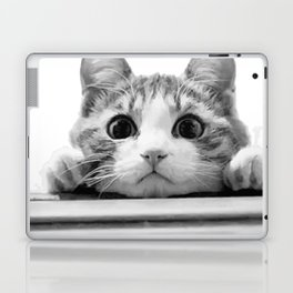 Cat reflected Laptop & iPad Skin